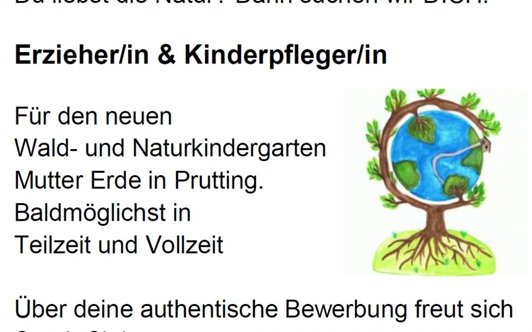 Wald- und Naturkindergarten – Stellenausschreibung